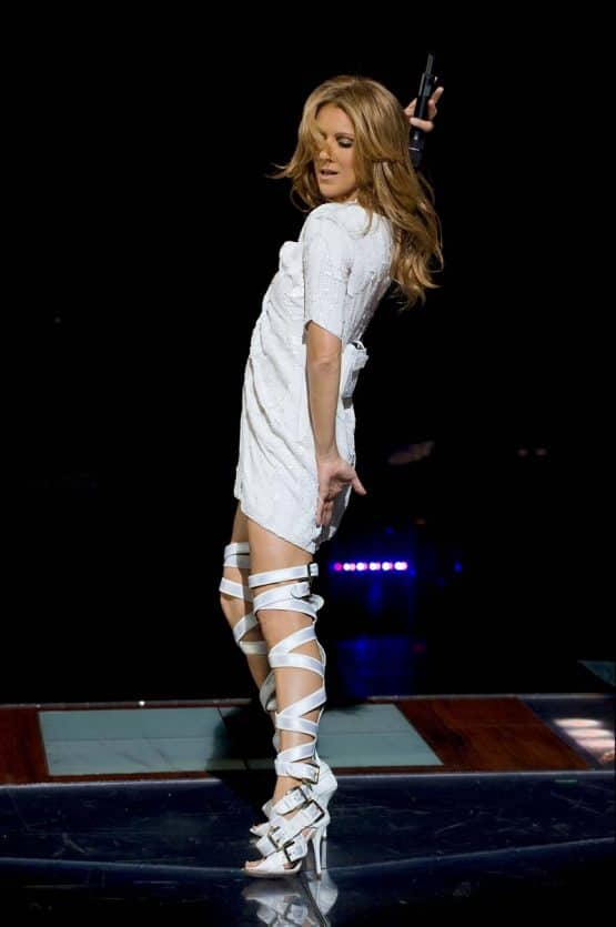 Celine-Dion-VIP Experience